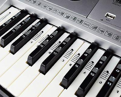 Piano and Keyboard Set for White and Black Keys